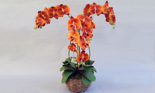 High Quality Artificial Orchid Flowers