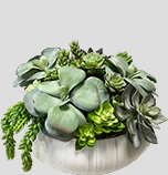 Artificial/Silk Faux Succulent Arrangements