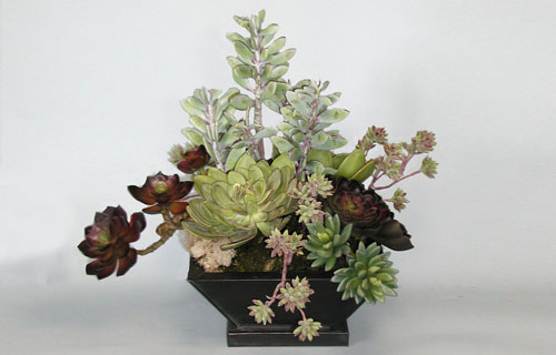 Succulent Local Delivery, Installation