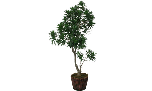 Professionally Assembled Artificial Trees