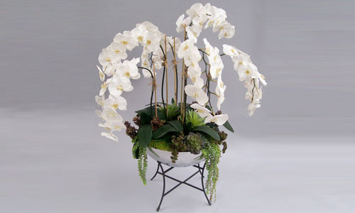 Dana Point Premade & Custom Designs Orchids